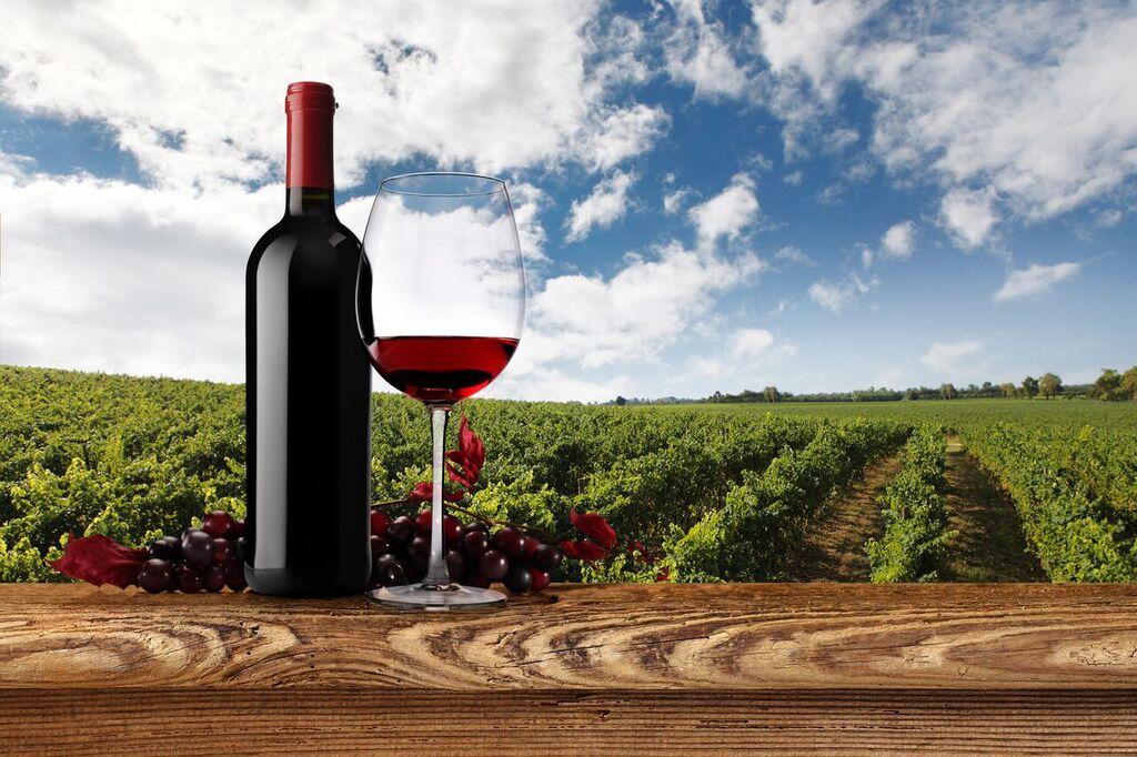Una bottiglia, un bicchiere di vino e un grappolo davanti un bel vigneto. Copyright Foto: Norbert Tischelmayer