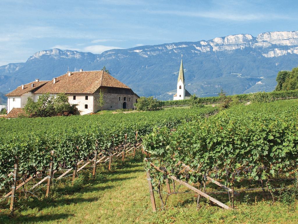Degustazione Alto Adige