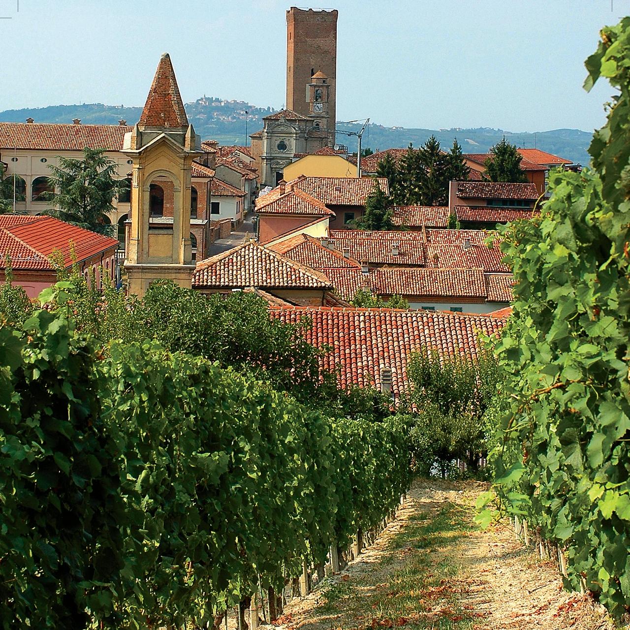 La città di Barbaresco e zona di produzione di un grande vino a base di Nebbiolo (Foto: Conosorzio Barolo Barbaresco)
