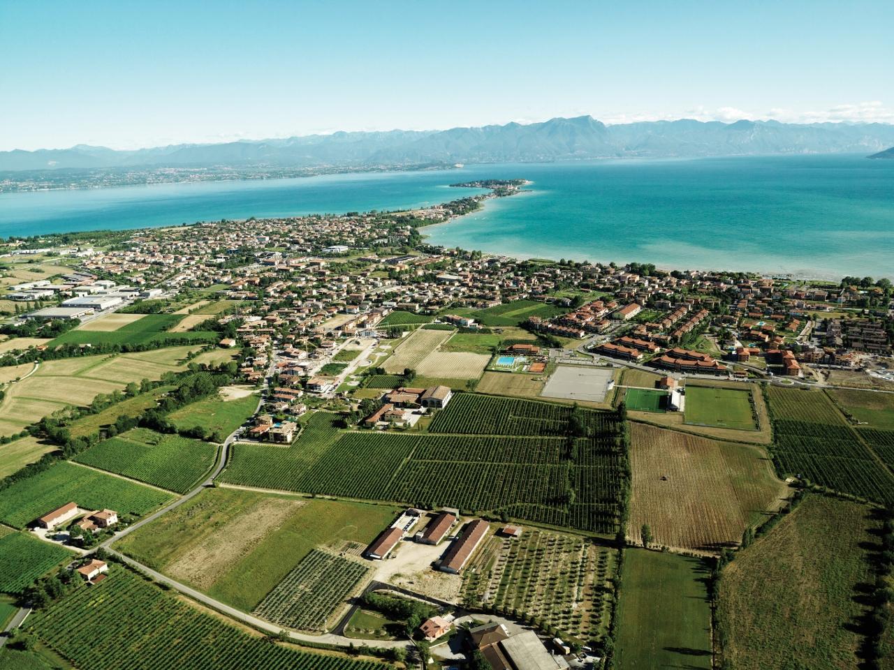 La zona di Lugana con la vista verso il Lago di Garda. Foto: Consorzio Tutela Lugana