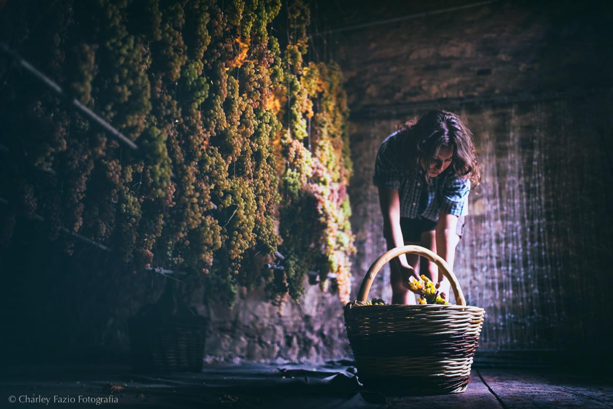 Le uve per il vino Soave ad appassire per il Recioto. Foto: ConsorzioSoave,Charlie Fazio
