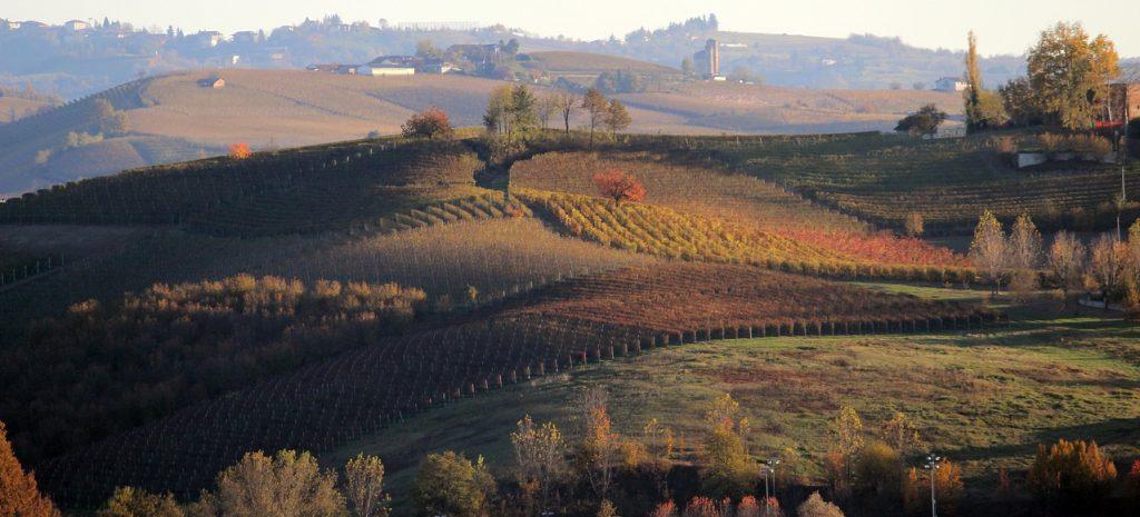 Il paesaggio mozzafiato delle Langhe in Piemonte, zona di prozuzione anche del vino Barolo
