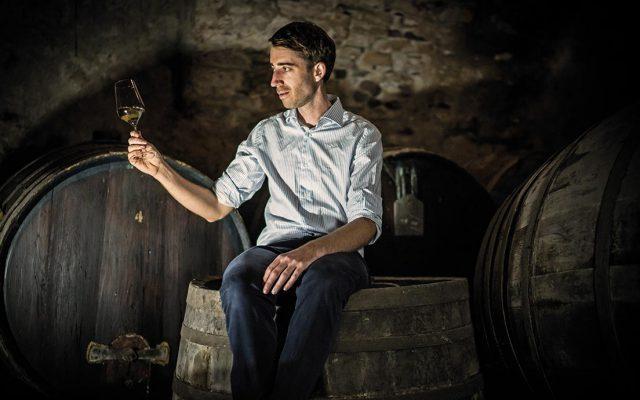 I riconoscimenti scoperta e collezione dell'anno 2017 di Wein-Plus