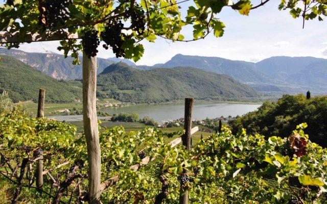 Best of Alto Adige 2020 – Tante novità al Nord