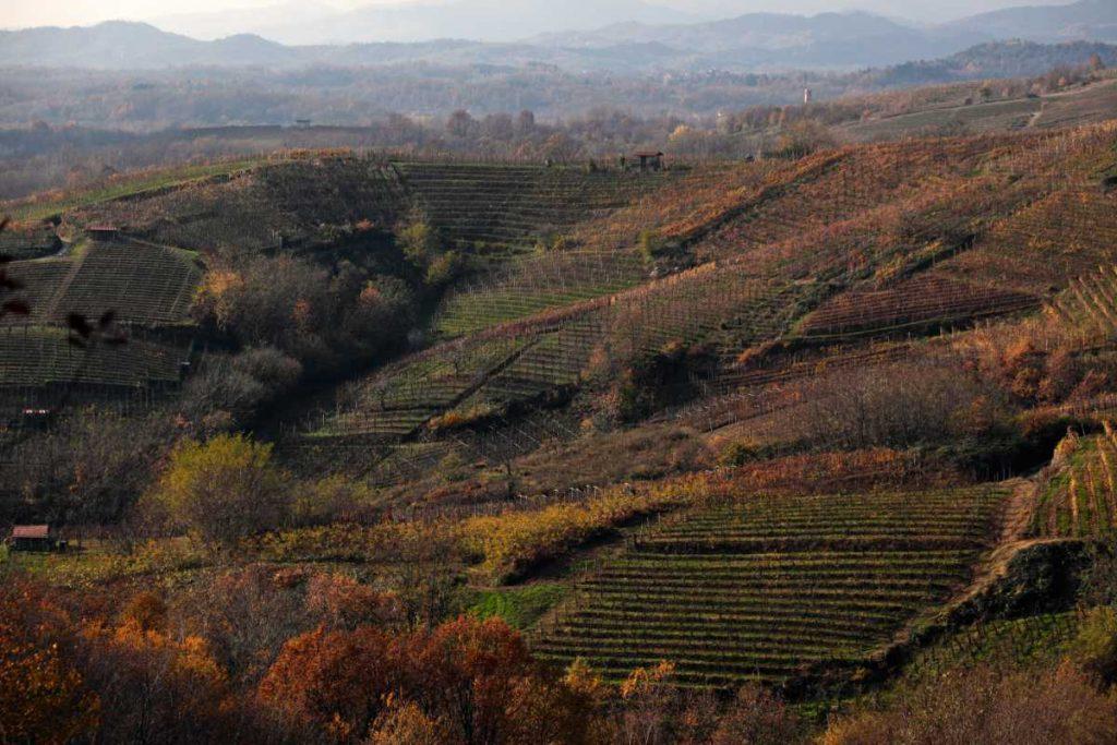Il paesaggio mozzafiato dell' Alto Piemonte 2020 dove si produce vini ecellenti di Nebbiolo ad es. Boca, Ghemme, Gattinara, ... Foto per le news 20 10 di wein.plus Italia