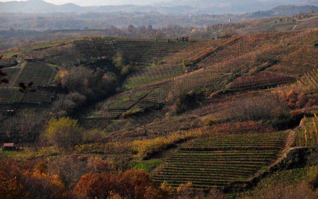 BEST OF Alto Piemonte 2020