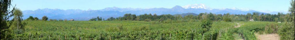 La montgna fa la scenorafia per la zona di produzione di vino a base di Nebbiolo nel nord d'Italia in Piemonte. Foto per il BEST OF di wein.plus