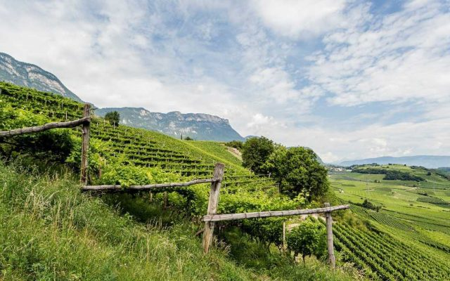 BEST OF Alto Adige 2021