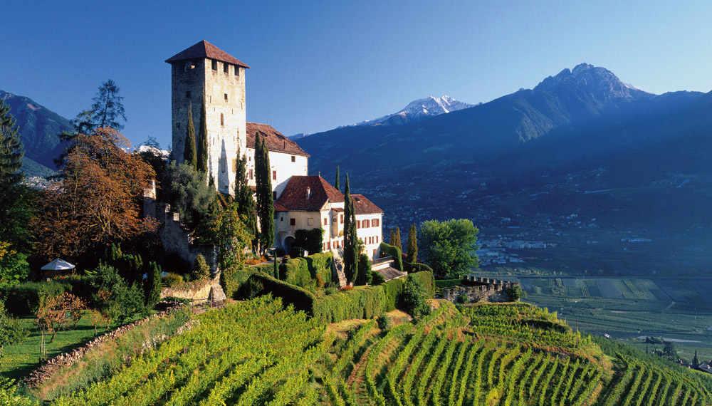 Uscito nella pregiata guida di Wein-Plus il Best of Alto Adige 2018. Foto: © IDM Südtirol/Florian Andergassen