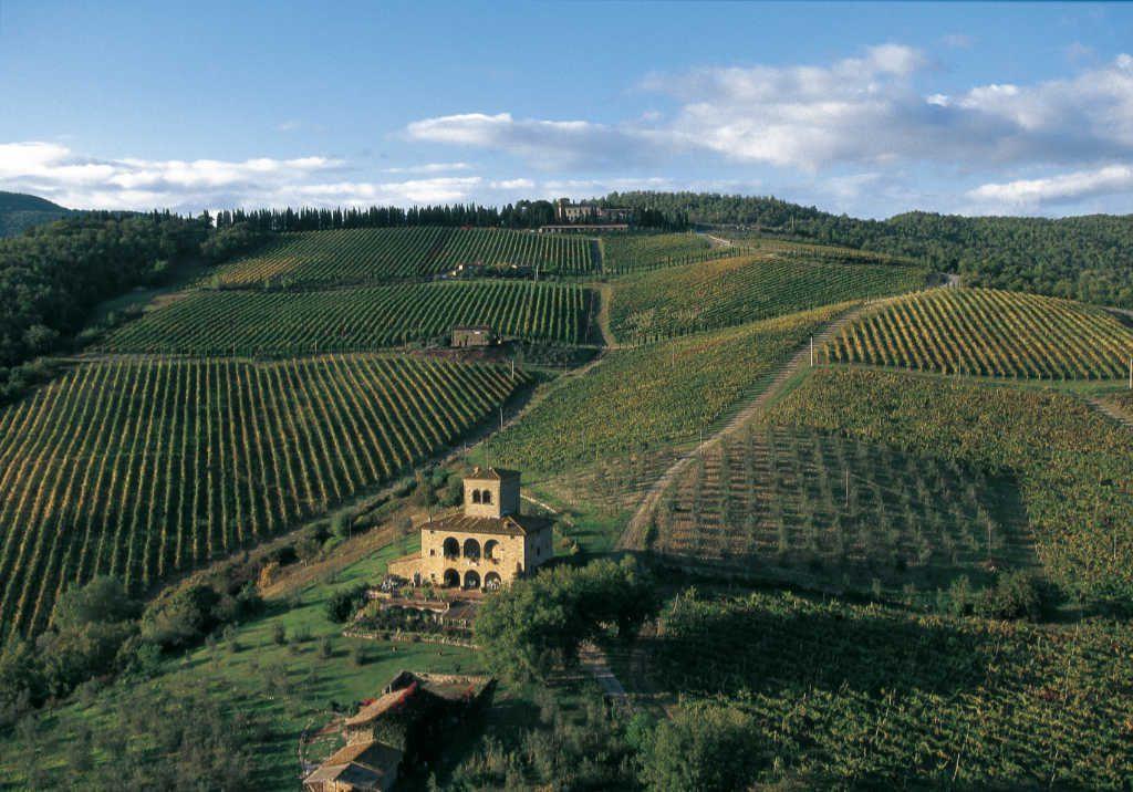 Radda in Chianti. Vigneti in cui nasce il Sangiovese per i vini del Chianti Classico degustati per il Best of Chianti Classico 2018 della guida Wein-Plus.