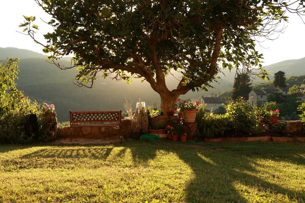 Paessaggio in Toscana, un giardino tra i vigneti - Foto per l'articolo di Wein-Plus Italia