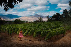 Paesaggi siciliani con ragazza con un cesto di uve. Foto per il BEST OF Etna - Consorzio di Tutela Vini Etna DOC per wein.plus