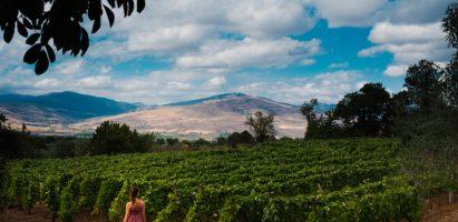 BEST OF Etna – Il rinascimento vulcanico