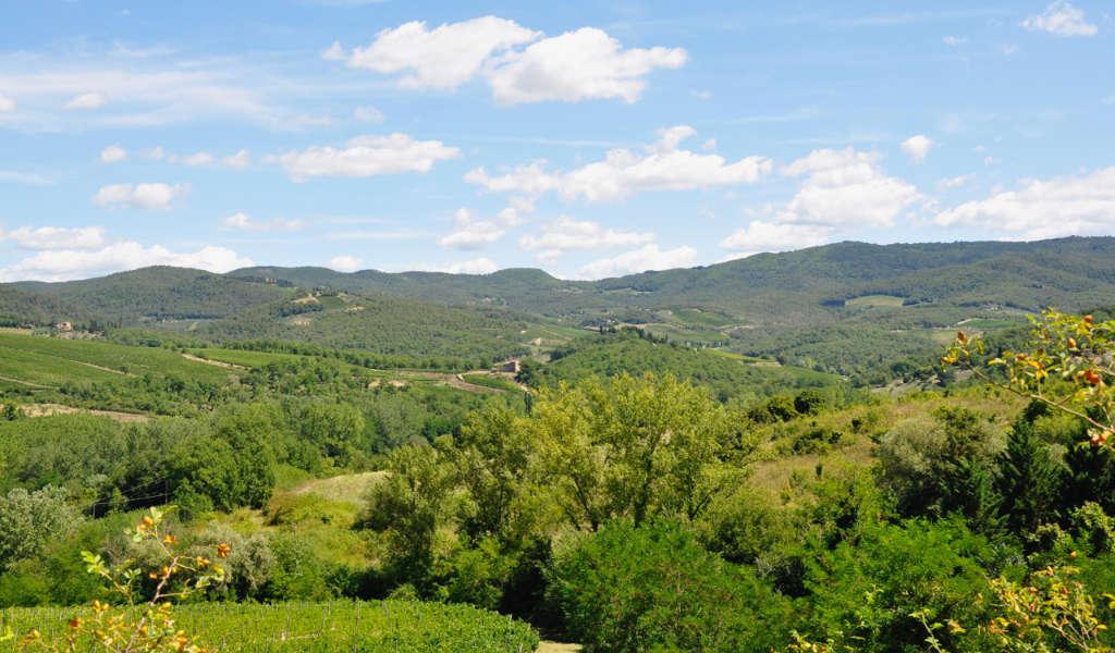 Panorama di Rocca di Castagnoli nel Chianti Classico, Toscana. wein.plus Italia