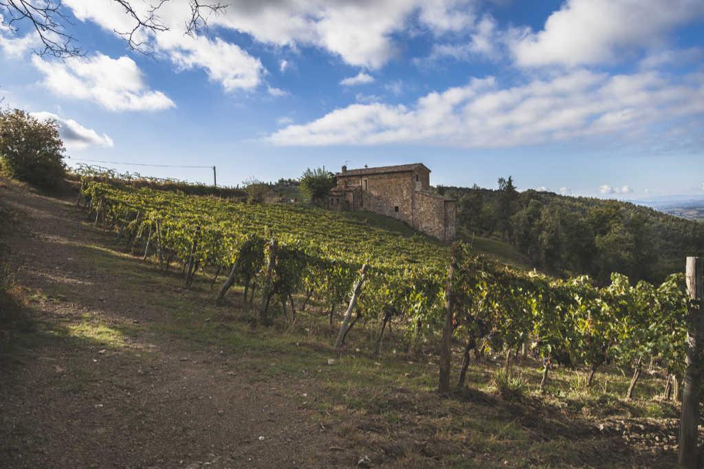 Vigneti e cantina nel Chianto classico. Foto: Cantina Piemaggio in Castellina per Wein-Plus articolo pacco degustazione Natale 2018