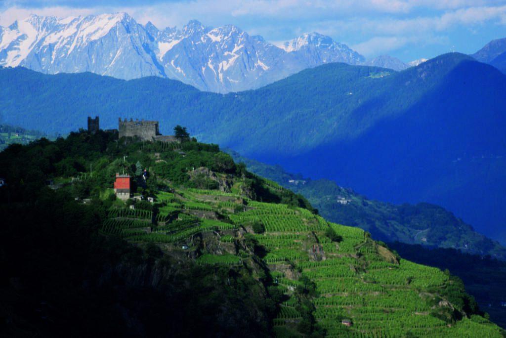 Grumello, sottozona in Valtellina. Foto: Elio Della Ferrera