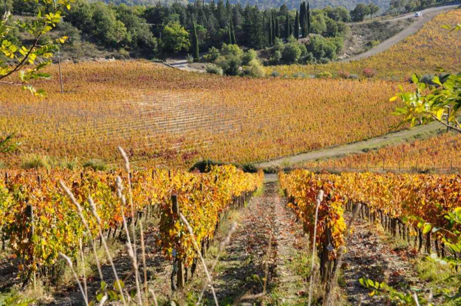 Castellina inChianti nell'autunno - foto per illustrare l'articolo di wein.plus sulla degustazione dei vini toscani a base di Sangiovese