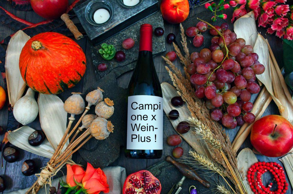 Bottiglia sul tavolo con frutta e verdura. Foto teaser per lßarticolo sul pacco degustazione autunno 2019 di Wein-Plus