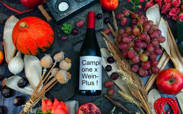 Pacco degustazione autunno 2019 di Wein-Plus con due vini dalla Sicilia