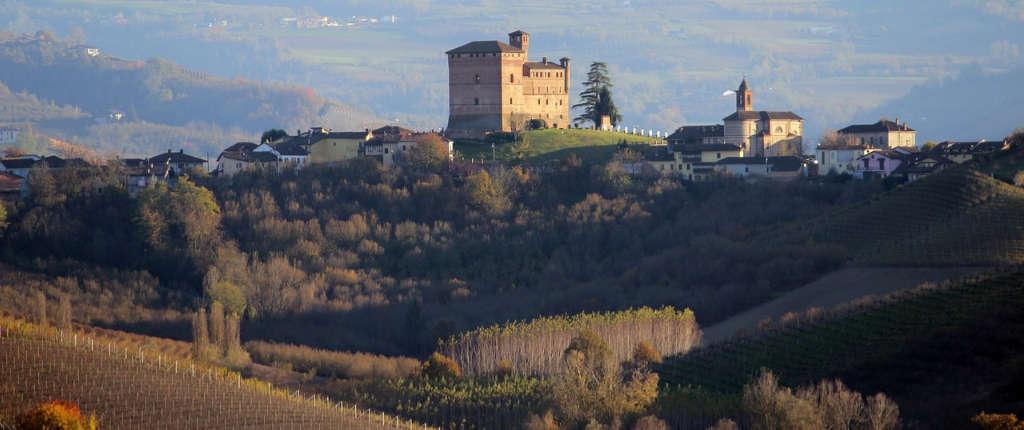 Paessaggio in Piemonte - Langhe con bosco e vigneti. Illustrazione per l'articolo di Wein-Plus. Foto: Pixabay