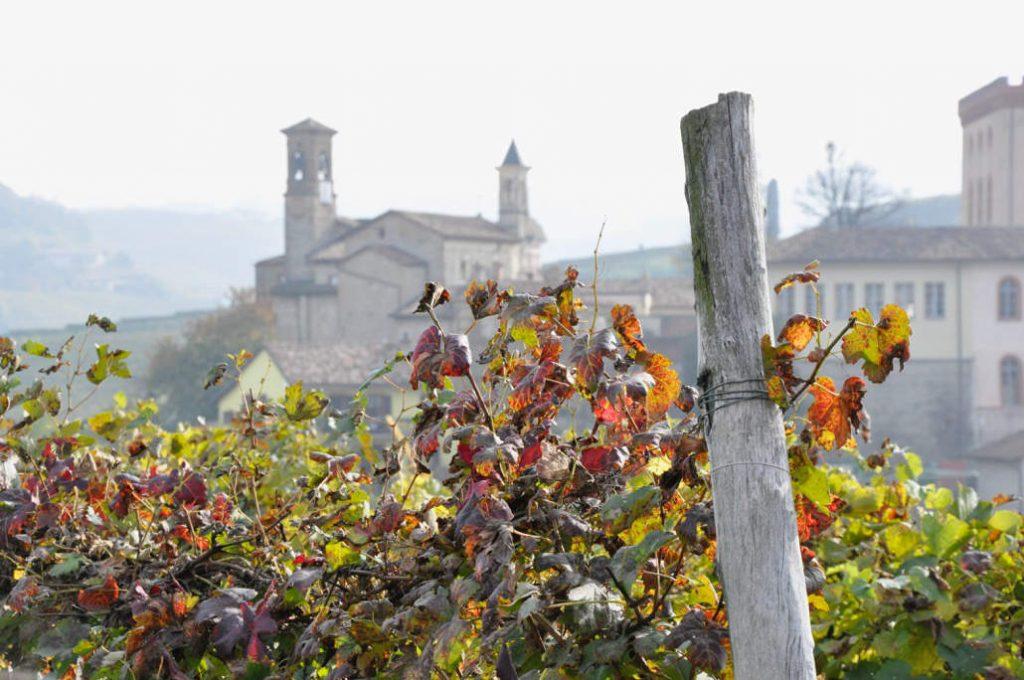 Il meglio dell'Italia 2020 in wein.plus arriva anche dal Piemonte. Qui veduta sulla citta di Barolo tra le vigne d'autunno.