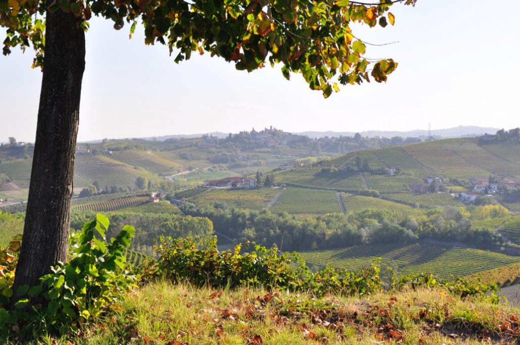 Vista sulla Langa dove nascono i vini a base di Nebbiolo degustati e recensiti per il meglio dell'Italia 2020 in wein.plus