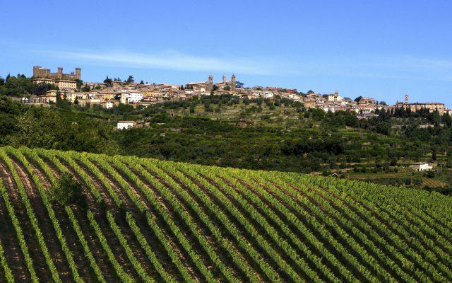 Best of Brunello: Degustazione speciale Wein-Plus