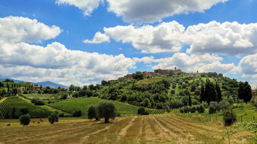 Un paesaggio in Toscana per annunciare che wein.plus si occuperà anche del vino toscano nell'anno nuovo.