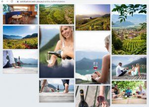 Profilo cantina Kaltern con membership in wein.plus - Screenshot dalla guida vino